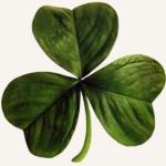 Um pouco do St. Patrick's Day