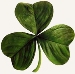 Trevo - St. Patrick's Day