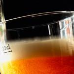 Cerveja Belga – Patrimônio Cultural da Humanidade