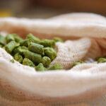 Como Fazer Corretamente o Dry Hopping na Sua Cerveja